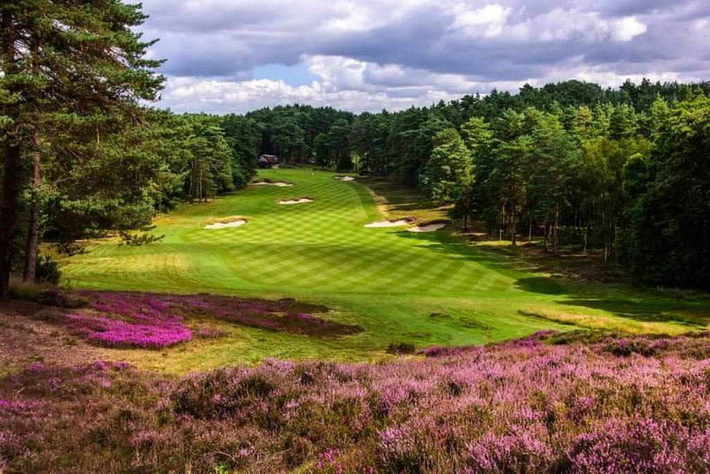 Sunningdale Golf Club (new)