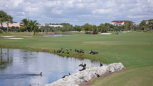 Shell Point Golf Course